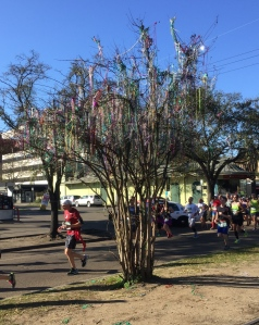 A tree covered in Mardi Gras beads